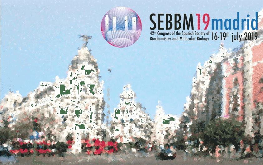 SEBBM 2019